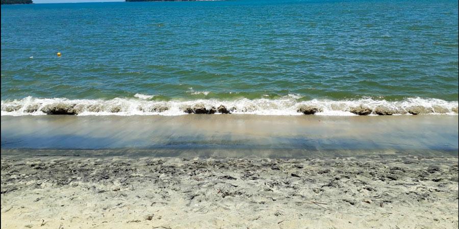 Foto da Praia da Mococa Caraguatatuba - Naturam