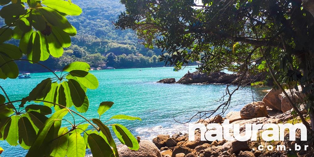 Trilhas de Ubatuba - Trilha da Praia da Santa Rita - Perequê Mirim
